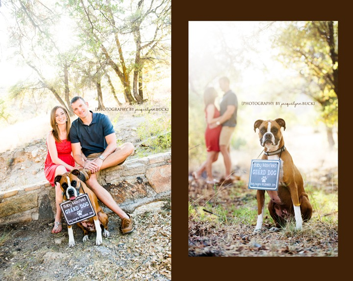 Guard Dog Duty baby announcements Tucson Phoenix Southern – Birth Announcement with Dog